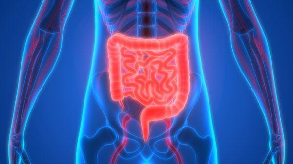 Que es la enfermedad del apendice diagnostico tardio peritonitis