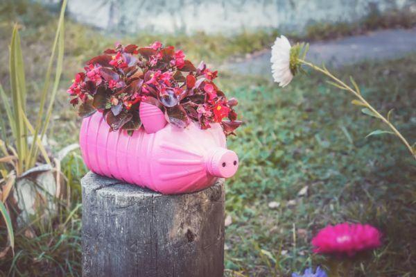 manualidades-para-el-dia-de-la-tierra-macetero-rosa-istock