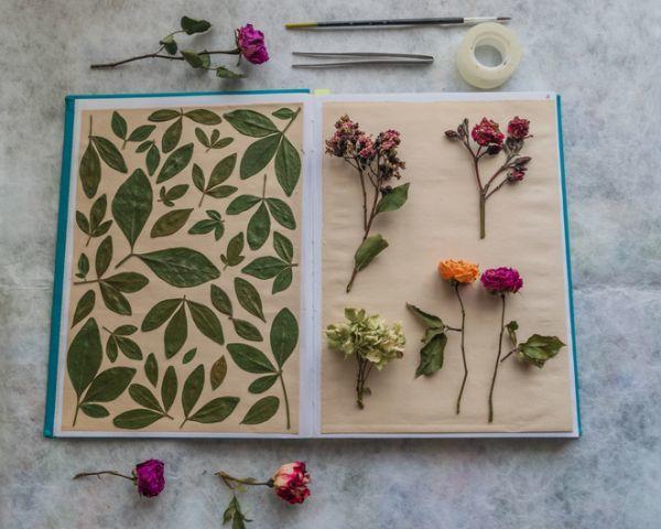 Manualidades para niños para el día del árbol con collage de flores