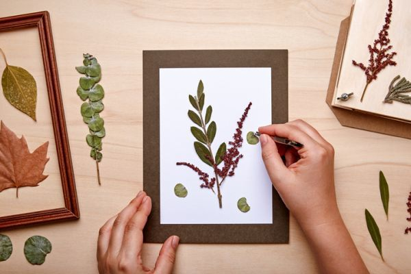 Manualidades para niños dia del árbol con cuadro con hojas