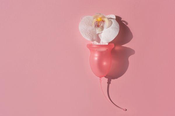 Copa menstrual y flor