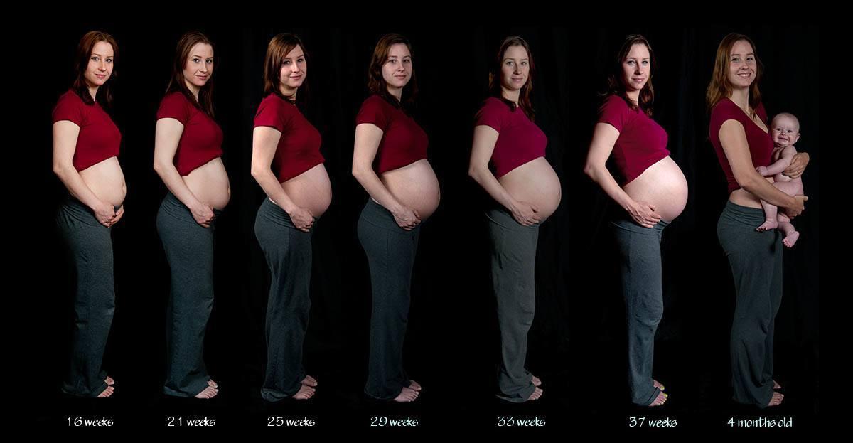 semanas-del-embarazo-como-se-calculan