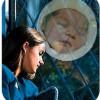 Embarazo psicológico