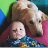 Alergias Niños | Tener mascotas ayuda a prevenirlas