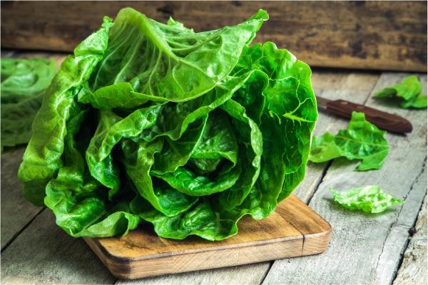 Calmar la mastitis con hojas de col
