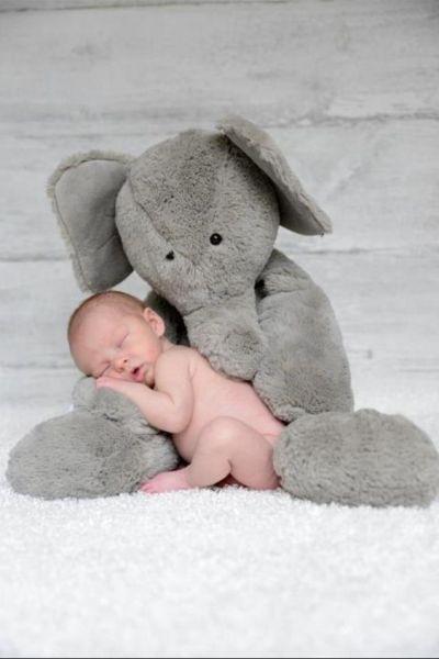 idas-de-fotos-creativas-para-recien-nacidos-elefante-pinterest-bebeazul