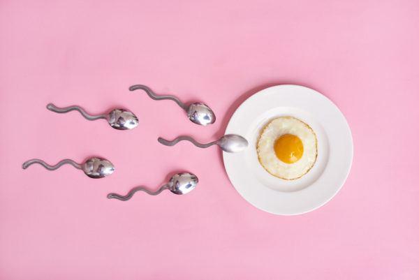 La concepción sin ovulación