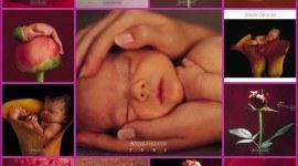 Las madres son la influencia decisiva, en el temperamento del niño, durante el primer año de vida.