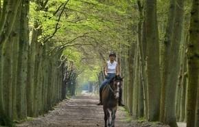 ¿Es seguro montar a caballo durante el embarazo?