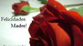 Poemas para el Día de la Madre | 4 de mayo 2014