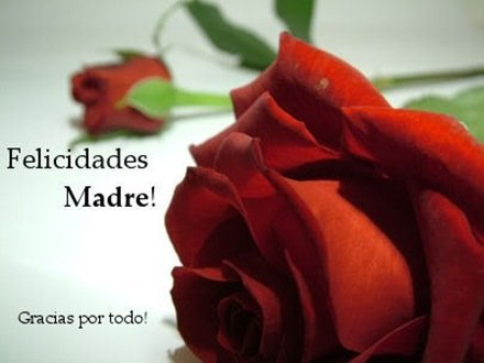 Dia_de_las_madres2