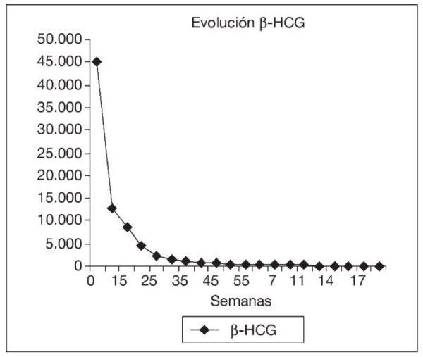 Orientación-niveles-hcg-durante-el-embarazo
