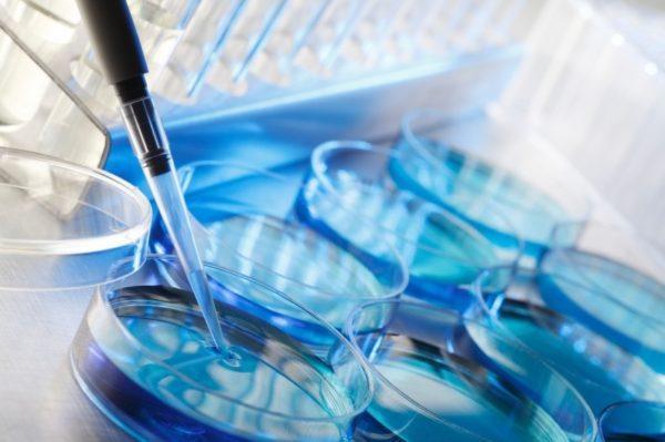 Pruebas-de-Fertilidad-para-hombres-y-mujeres-Seguridad-Social-fecundacion-in-vitro