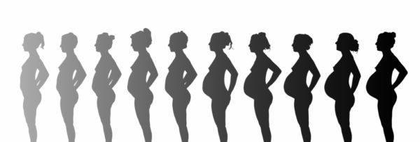 calcular-semanas-de-embarazo