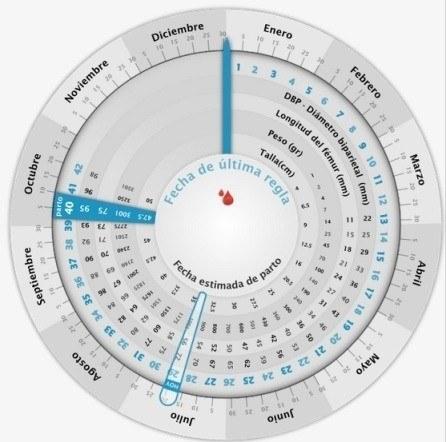 calcular-semanas-de-embarazo-gestograma