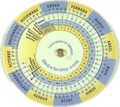 embarazo etapas del embarazo cómo funciona el gestograma de embarazo ...