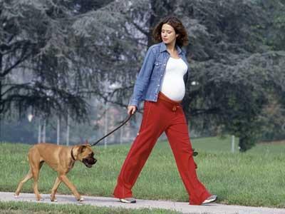 como-saber-el-sexo-del-bebe-tras-ocho-semanas-de-embarazo-caminar
