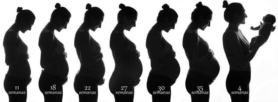 C 243 Mo Son Las Etapas De Gestaci 243 N En Mi Cuerpo Embarazo10 Com