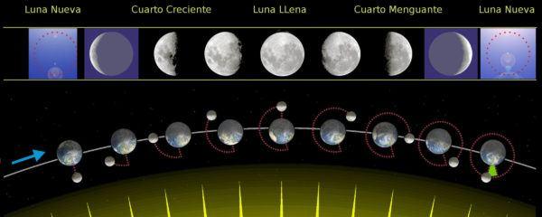 fases-lunares-para-saber-sexobebe