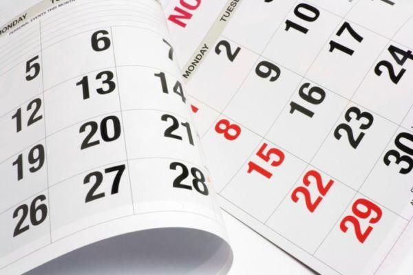 moco-cervical-calendario
