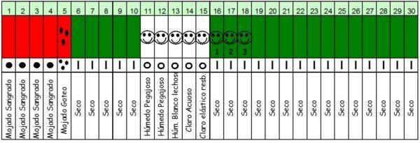 moco-cervical-calendario-fases