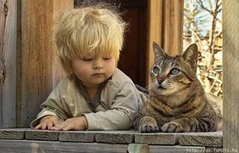 pets-and-babies-7
