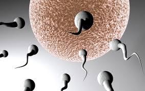 pruebas-de-fertilidad-en-el-hombre