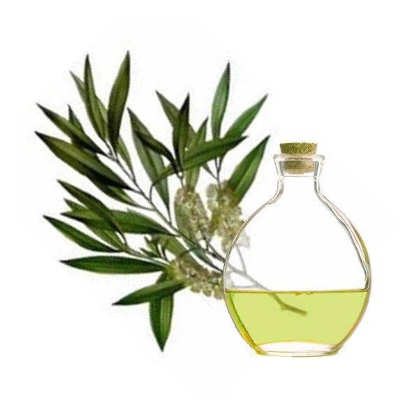remedios-caseros-para-flujo-amarillo-o-verde-aceite-de-arbol-de-te